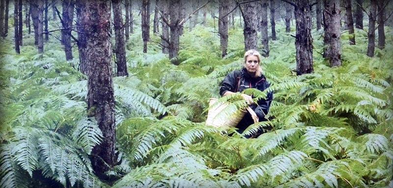 Sculpteur dans la forêt
